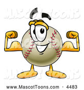 Mascot Vector Cartoon of a Friendly Baseball Mascot Cartoon Character Flexing His Arm Muscles by Toons4Biz