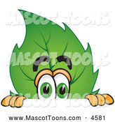 July 13th, 2013: Mascot Vector Cartoon of a Friendly Leaf Mascot Cartoon Character Scared and Peeking over a Surface by Toons4Biz