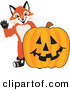 Mascot Vector Cartoon of a Fox Mascot Cartoon Character with a Halloween Jack O Lantern Pumpkin by Toons4Biz