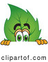 Mascot Vector Cartoon of a Friendly Leaf Mascot Cartoon Character Scared and Peeking over a Surface by Toons4Biz